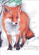 Fuchs0001